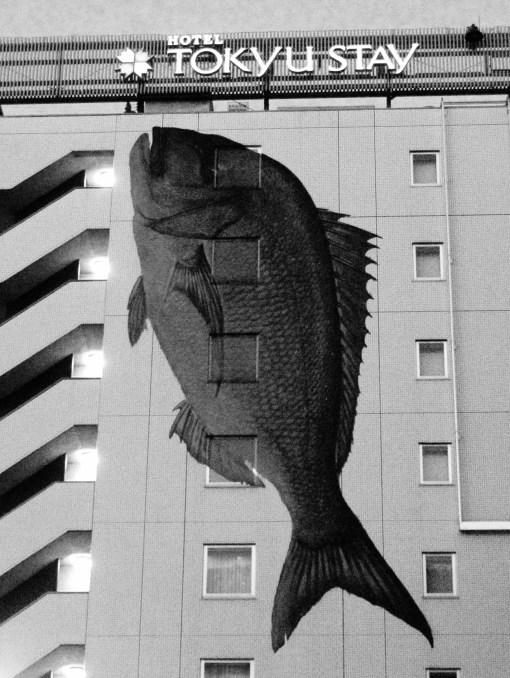 Hotel.  Tsukiji District.  Tokyo.  Nov 2009.