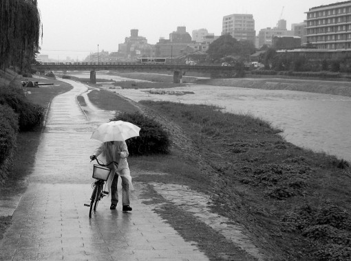 Soaked along the Kamo River.  Kyoto.  October 2007.