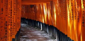 """Torii Tunnel"" at Fushimi Inari.  2008."