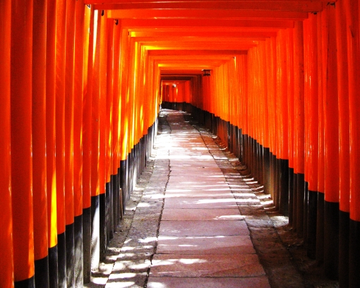 "Several dozen of the more than 10,000 ""Torii"" (sacred gates) at Fushimi Inari."