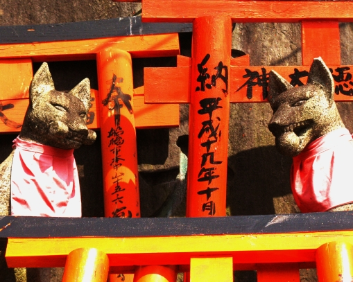 "A couple of the many foxes (""kitsune"") and hundreds of small torii at the Shrine atop Mt. Inari."